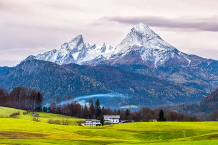 Green meadow and  snow-capped Watzmann mountain on a background. Bavarian alps. Germany