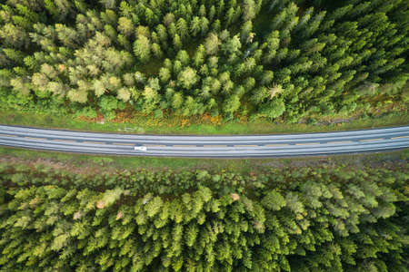 Car is Going on Country Road in Conifer Forest in Norway at Summer Day. Aerial Vertical Top-Down View