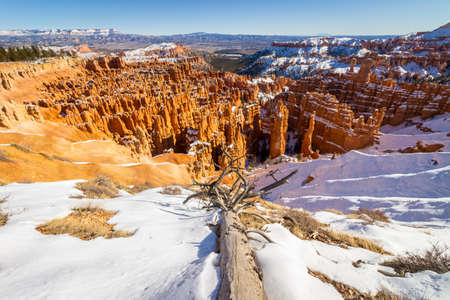Bryce Canyon Hoodoos in Winter on Sunny Day. Snow. Bryce Canyon National Park. Utah, USA.