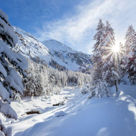 Engadine - Switzerland - Panoramic winter view of the Roseg Valley 版權商用圖片