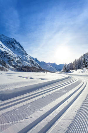 cross country ski run - winter landscape