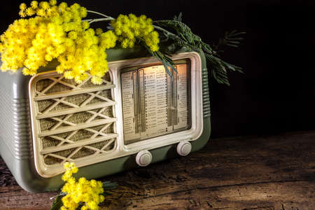 old radio with a sprig of mimosa