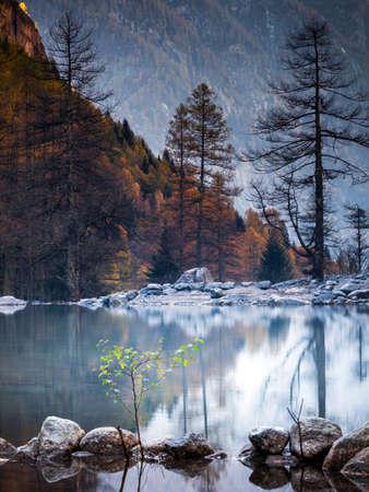 alpine stream scenery - evening reflections 版權商用圖片