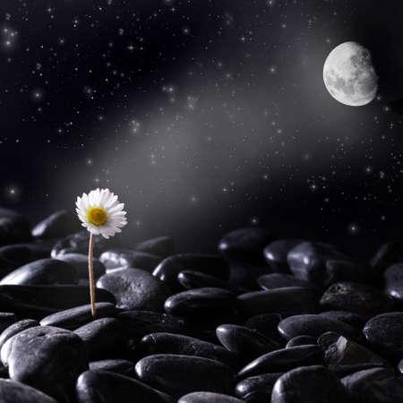Lunar attraction - concept close up