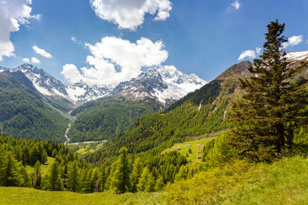 Valmalenco (IT) - view of the Ventina and Sissone valleys from the gold alp
