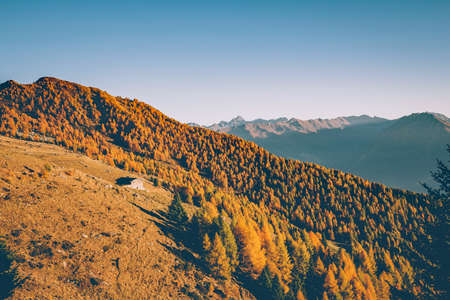 Sondrio - Valtellina (IT) - Autumn sunset at Alpe Colina