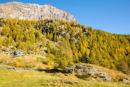 Ancient rural chalets in Valmalenco (IT), Alpe dell'Oro