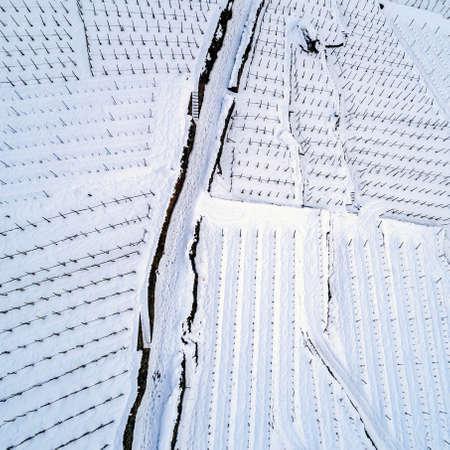 Valtellina (IT), Stepped vineyard with fresh snow
