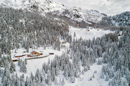 Huts and fir forest covered with fresh snow
