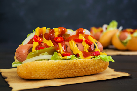 Delicious homemade hot dog on dark background