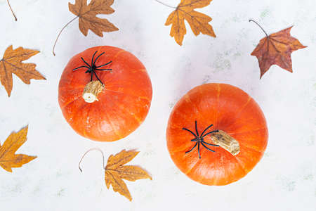 Helloween concept. Autumn composition with leaves and mini pumpkins. Top view Stock Photo