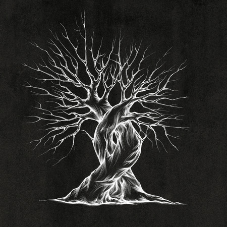Illustration of two intertwined trees