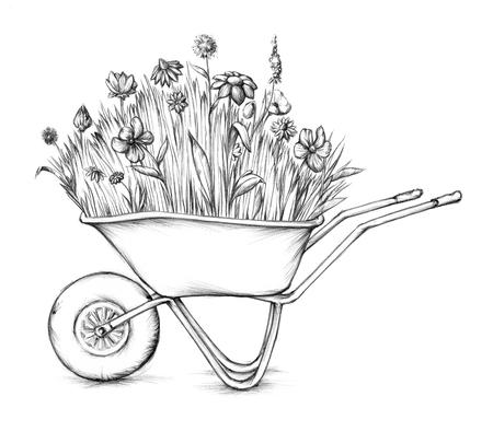 Illustration of a flower meadow in a wheelbarrow