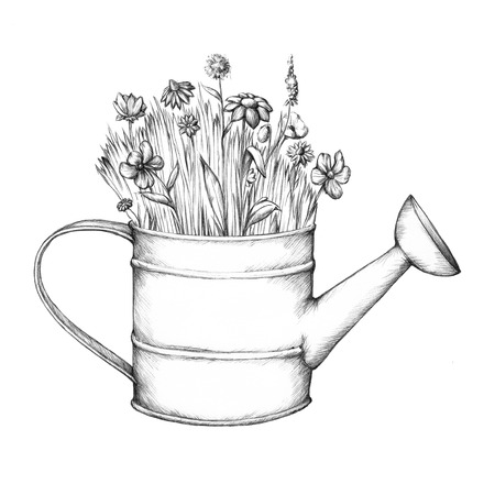 Illustration of a Flower meadow in a watering can