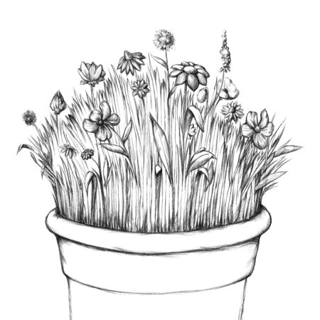 flower meadow: Illustration of a small flower meadow in a pot Stock Photo