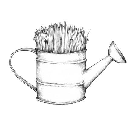grassy: Grassy watering can
