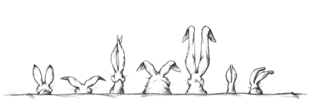 size: Hare ears in different shape and size Stock Photo