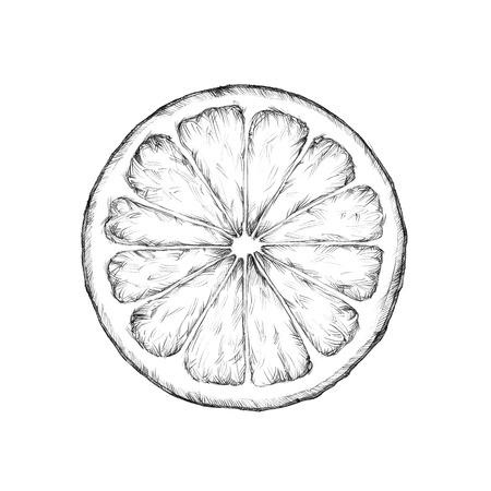Illustration of a lemon slice on a neutral background