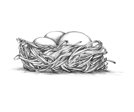 Illustration of a simple bird nest from the front Stock Photo