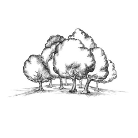 Illustration of a small forest on a gentle hill Stock Photo