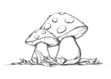 Illustration of Two flying mushrooms in autumn