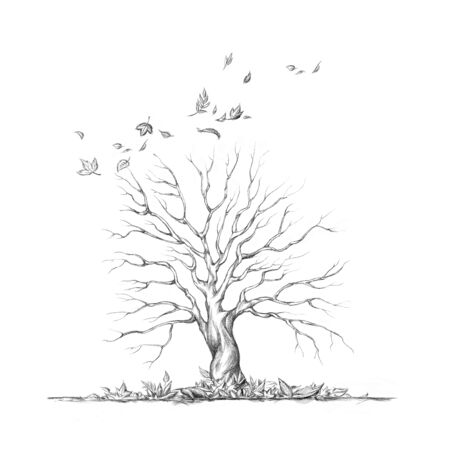Illustration of a Defoliated tree in autumn