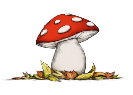 Illustration of a red Toadstool with some autumn leaves