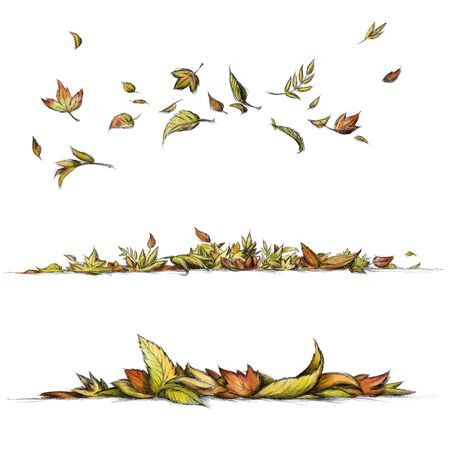 Illustration of Flying and lying leaves in different shapes and colors Banco de Imagens
