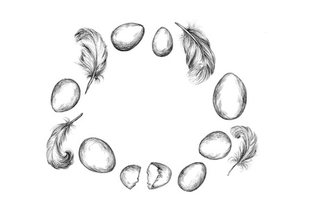 Illustration of a ring of eggs and feathers