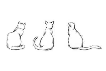 Illustration of three different sitting cats