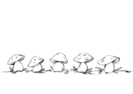 Illustration of some Fly agarics in a row in front of neutral white background