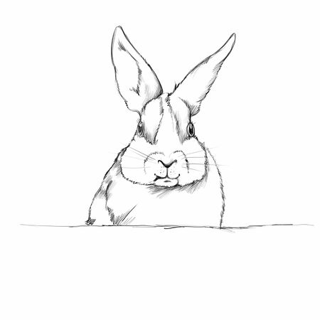 Illustration of a rabbit Фото со стока