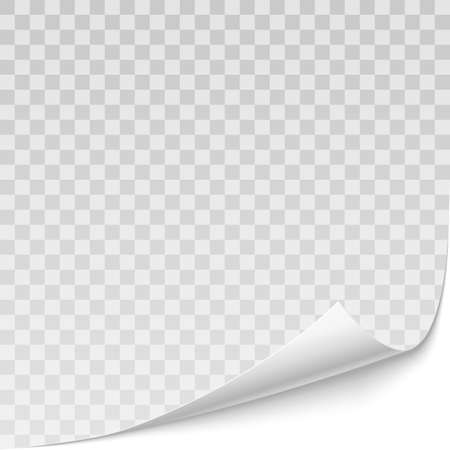 Vector realistic curved corner of white paper with shadow isolated on the transparent background. &xD;&xA;