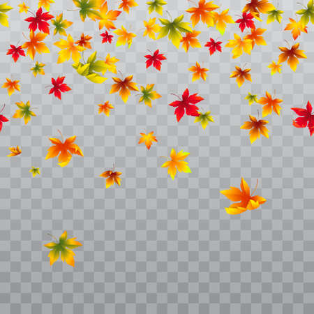 Vector seamless horizontal border with falling maple leaves. Autumn decoration for banners and flyers season design. Isolated on the transparent background.