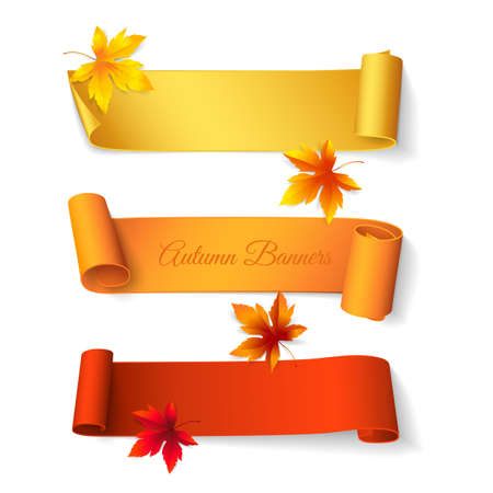 Set of curved short colored ribbons with maple leaves. Vector realistic elements for autumn banners and promotional flyers. Isolated from the background.