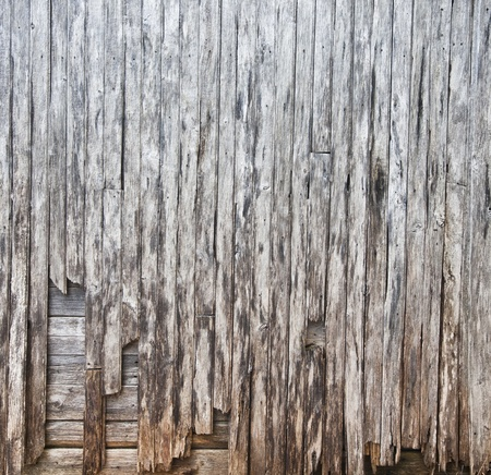 tongue and groove: Destroyed plank of wood TEXTURE