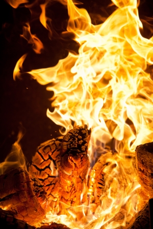 Close-up of flames and log wood burning Stock Photo - 18863095
