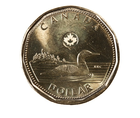A brand new 2012 shiny Canadian dollar coin with a loonie