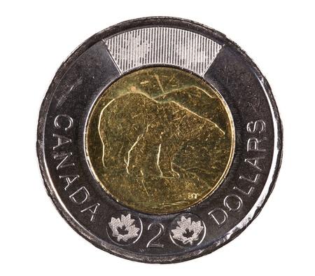 Монета с белым медведем старинные монеты россии фото разновидности
