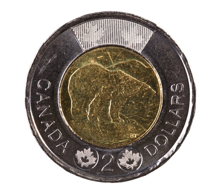 silver maple: A brand new 2012 shiny Canadian two dollar coin with a polar bear Stock Photo