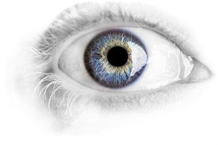 白で隔離されるスタジオのライトを使用して詳細の多くとマクロ青い目