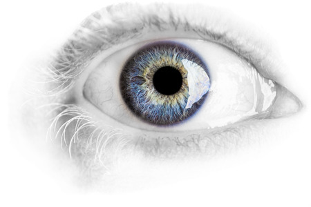 cornea: Macro blue eye with lots of details using studio lights isolated on white