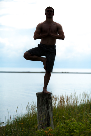 tree position: Young Adult in Silhouette Doing the Tadasana (Tree) position in Yoga on a Stump in Nature