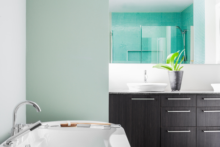 Modern Bathroom with blank wall for your test, image or logo. Soft Green Pastel Colors