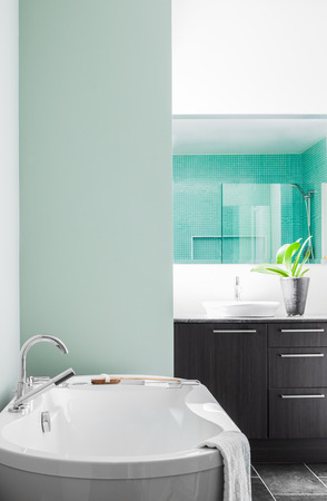 Modern Bathroom with blank wall for your test, image or logo. Soft Green Pastel Colors Stock Photo - 26492508