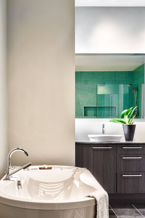 bathroom wall: Modern Bathroom with blank wall for your test, image or logo. Soft Green Pastel Colors