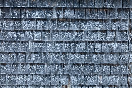 shingles: Ripias del cedro de nieve durante un frío día de invierno Foto de archivo