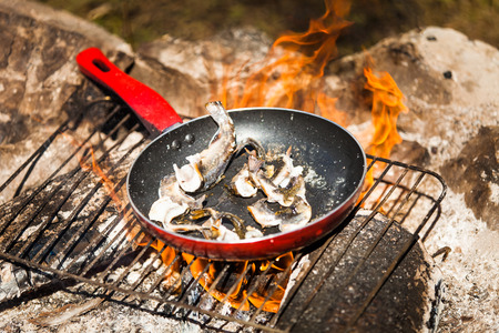 fish fire: Small Trouts Cooking in the Pan on a Campfire Stock Photo