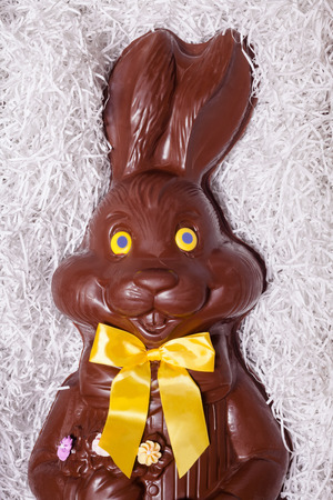 Details of a Big Chocolate Bunny in the box photo