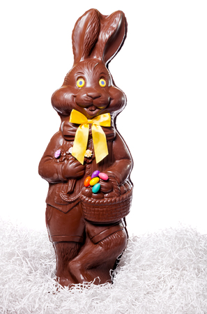 Tall Chocolate Bunny Isolate on White Background photo
